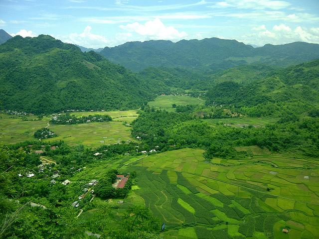 Thung lũng Mai Châu xinh đẹp