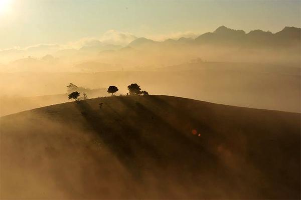 Cảnh đẹp ntrong tranh của Mộc Châu lúc mặt trời mọc